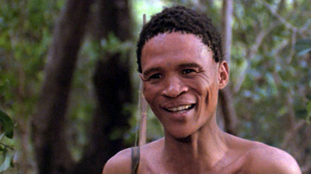 gods must be crazy This sequel to the enormous international hit the gods must be crazy isn't quite as fresh and enchanting as the original, but it is still a garden of small delights nxau, the kalihari bushman .